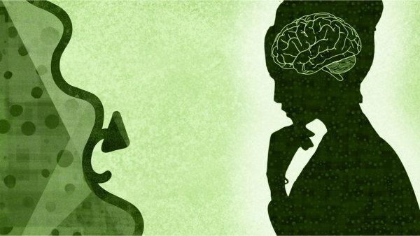 You are currently viewing Glaubenssätze aus neurowissenschaftlicher Sicht